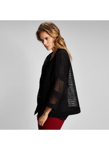Vekem-Limited Edition Çizgili File Ceket Siyah